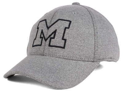 Michigan Wolverines Top of the World NCAA DAFOG Stretch Cap