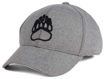 Montana Grizzlies Top of the World NCAA DAFOG Stretch Cap