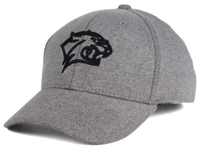 5fbaf6d8c74 New Hampshire Wildcats Top of the World NCAA DAFOG Stretch Cap