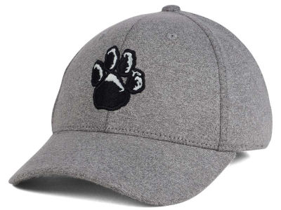 Pittsburgh Panthers Top of the World NCAA DAFOG Stretch Cap