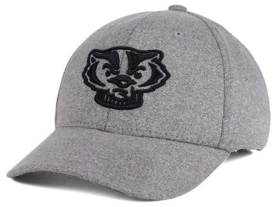 Wisconsin Badgers Top of the World NCAA DAFOG Stretch Cap