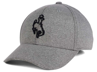 Wyoming Cowboys Top of the World NCAA DAFOG Stretch Cap