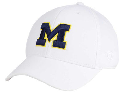Michigan Wolverines Top of the World NCAA Coolon Stretch Cap