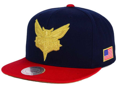 Charlotte Hornets Mitchell and Ness NBA USA 2 Tone Snapback Cap