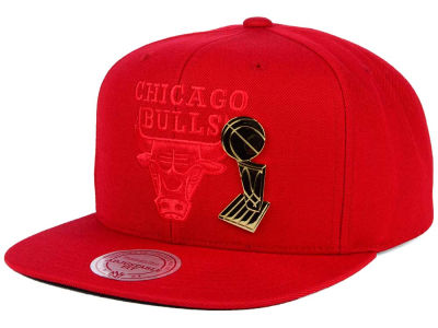 Chicago Bulls Mitchell and Ness NBA Broach Champ Collection Snapback Cap
