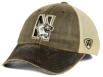 Northwestern Wildcats Top of the World NCAA Scat Mesh Cap