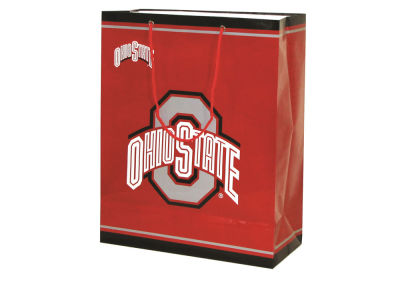 Ohio State Buckeyes Medium Gift Bag
