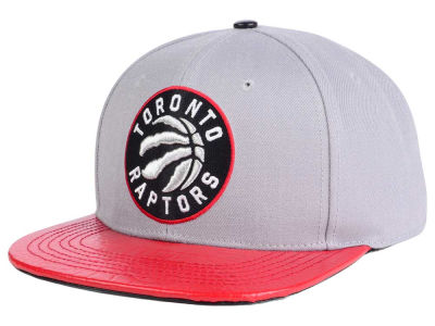 Toronto Raptors Pro Standard NBA Gray Leather Strapback Cap