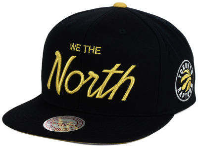Toronto Raptors Mitchell and Ness NBA We The North Collection Snapback Cap