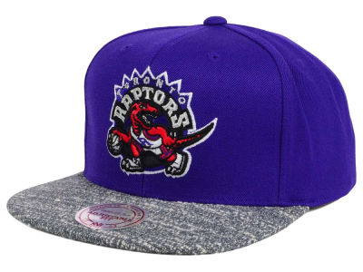 Toronto Raptors NBA TC Gray Noise Snapback Cap