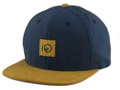 tentree Guardian Snapback Hat