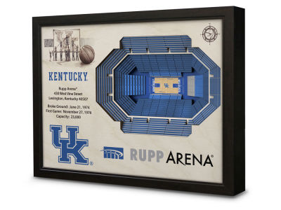 Kentucky Wildcats Stadium View Wall Art