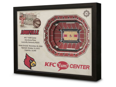 Louisville Cardinals Stadium View Wall Art