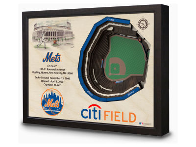 New York Mets Stadium View Wall Art