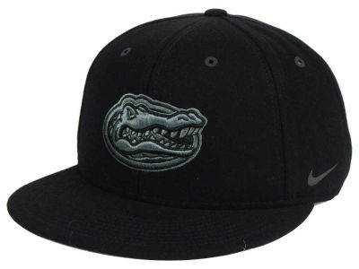Florida Gators Nike NCAA New Day True Snapback Cap