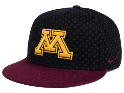 Minnesota Golden Gophers Nike NCAA Local DNA Seasonal True Snapback Cap