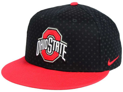 Ohio State Buckeyes Nike NCAA Local DNA Seasonal True Snapback Cap