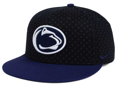 Penn State Nittany Lions Nike NCAA Local DNA Seasonal True Snapback Cap