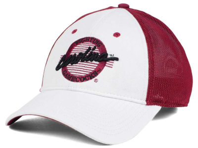 South Carolina Gamecocks The Game NCAA Circle Stretch Cap