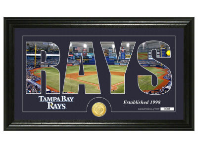 Tampa Bay Rays Silhouette Word Art Photo Mint
