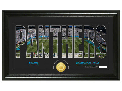 Carolina Panthers Silhouette Word Art Photo Mint