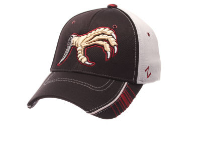 South Carolina Gamecocks Zephyr NCAA Scanner Cap