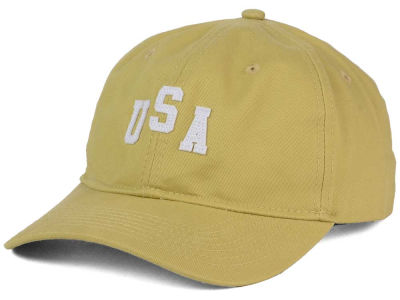 Official USA Dad Hat