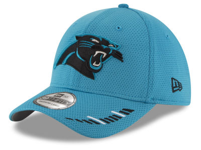 Carolina Panthers New Era NFL Team Hashmark 39THIRTY Cap