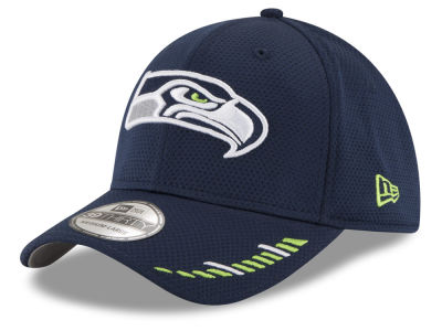 Seattle Seahawks New Era NFL Team Hashmark 39THIRTY Cap