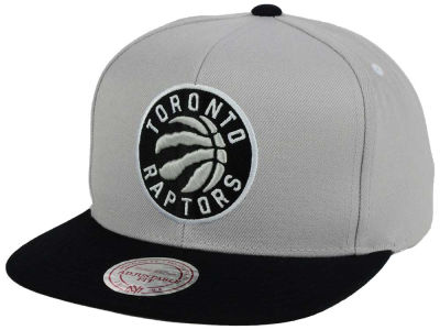 Toronto Raptors Mitchell and Ness NBA Team Gray White Snapback Cap