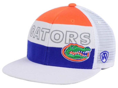 Florida Gators Top of the World NCAA Midcourt Snapback Cap