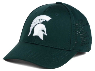 Michigan State Spartans Top of the World NCAA Rails Flex Cap