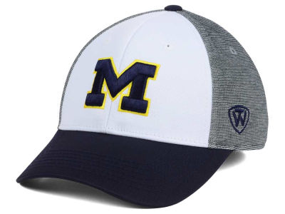 Michigan Wolverines Top of the World NCAA Hustle Flex Cap
