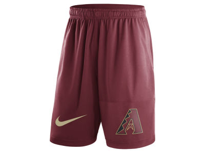 Arizona Diamondbacks Nike MLB Men's Dry Fly Shorts