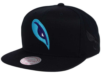 Charlotte Hornets Mitchell and Ness NBA Elements Snapback Cap