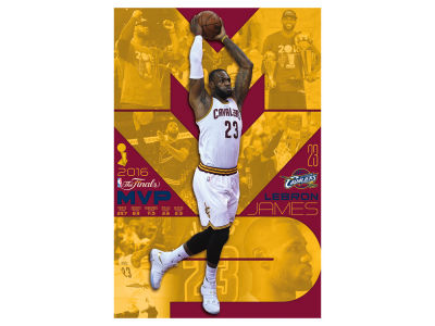 Cleveland Cavaliers Lebron James 24x36 NBA Champs Poster