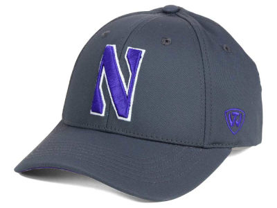 Northwestern Wildcats Top of the World NCAA Fresh 2 Adjustable Cap