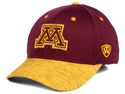 Minnesota Golden Gophers Top of the World NCAA Fable Stretch Cap