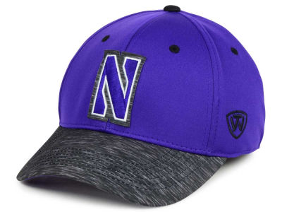 Northwestern Wildcats Top of the World NCAA Fable Stretch Cap