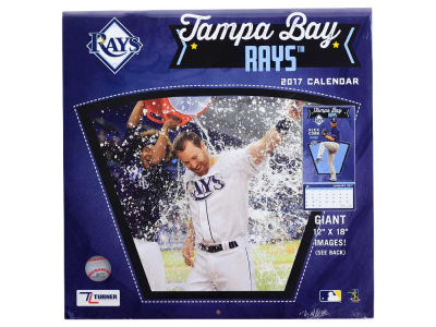 Tampa Bay Rays 2017 Team Wall Calendar 12x12