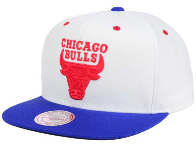 Chicago Bulls Mitchell & Ness The True Blue Sneaker Hooks Cap