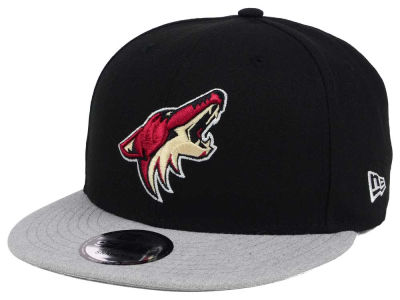 Arizona Coyotes New Era NHL Heather Vize 9FIFTY Snapback Cap