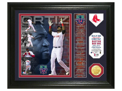 "Boston Red Sox David Ortiz ""Final Season"" Single Coin Photo Mint"