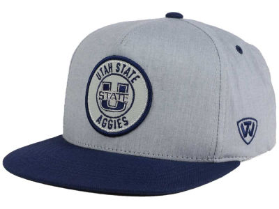 Utah State Aggies Top of the World NCAA Illin Snapback Cap