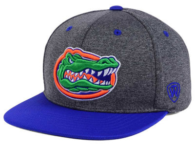 Florida Gators Top of the World NCAA Dark Energy 2Tone Snapback Cap