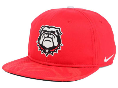 Georgia Bulldogs Nike NCAA 4.0 Hook Snapback Cap