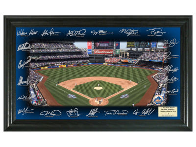 New York Mets Team Signature Field