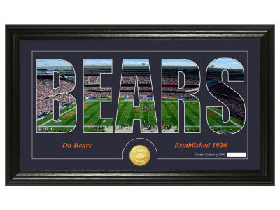 Chicago Bears Silhouette Word Art Photo Mint