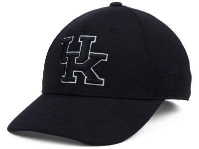 Kentucky Wildcats Top of the World NCAA Completion Stretch Cap