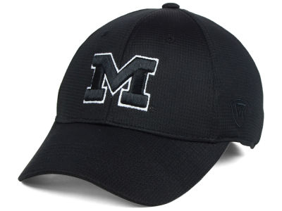 Michigan Wolverines Top of the World NCAA Completion Stretch Cap